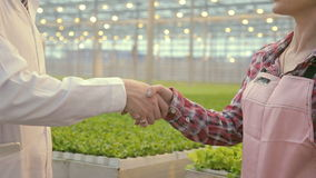 Two people shake hands after checking in the farming enterprise. quality control and quality standards, the expert. Congratulates on his victory stock footage