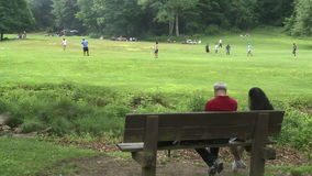 Two people sitting on a bench in a Nature Reserve watching boys play ball. A view or scene of people stock video