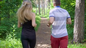 Two people in sportswear jogging together in green sunny forest. Back view of two sportive people running on path in green summer forest stock video footage