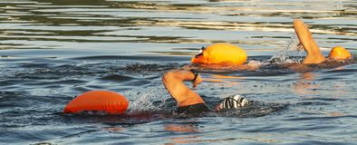 Two simmers with orange flotation divices in water. Two people swimming in the long island sound with orange flotation devices floating behind them for their stock photo