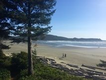 Two people walking along the beach in Tofino, British Columbia, Canada. Looking down at sandy Cox Bay near Tofino in British Columbia, Canada. Two people are royalty free stock photography
