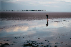 Two People Walking on Shallow Waters Royalty Free Stock Images