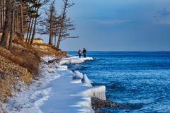 Two people walking on the shore of Baikal lake in winter. Couple of people walking on icy shore of Baikal lake in December with blue water and trees royalty free stock image