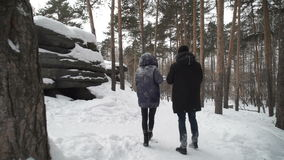 Two people are walking in winter forest trail stock video