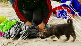 Two People Wrapping Parachute Ropes On The Ground. Shot of hands and knees of two persons in sportswear on knees wrapping the parachute gathering together the stock video footage