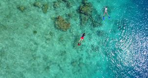 Two 2 people young couple snorkeling over coral reef with drone aerial flying view in crystal clear aqua blue. Shallow water stock video footage