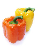 Two pepper Royalty Free Stock Photos
