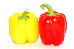 Two Pepper Royalty Free Stock Image