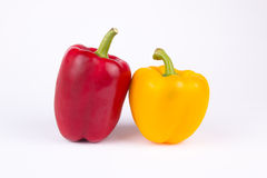 Two peppers. Looks like lover Stock Image