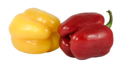 Two peppers red and yellow Stock Photos