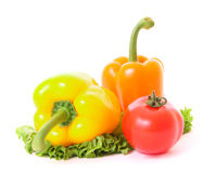 Two peppers and tomato on green salad Royalty Free Stock Photography