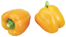 Two peppers, two cayennes. Yellow, orange Royalty Free Stock Photo
