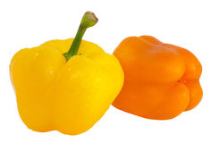 Two peppers -  yellow and orange isolated Stock Image