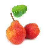 Two perfect red pears with leaf Royalty Free Stock Photos