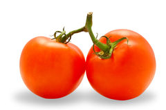 Two perfected tomatoes (with clipping path). A couple of ripe and juicy tomatoes isolated on white background Stock Images