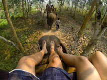 Two person feet on top of elephant. Fun ride off the elephant carriage in Indonesia stock photos