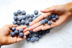 Two Person's Hand With Blueberries on Top Royalty Free Stock Images