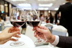 Two persons clinking glasses of rich red wine in a party. Concept of making new friend, joining party, drink don`t drive Stock Photos