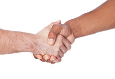 Two persons of different cultures shaking hands. All on white background Royalty Free Stock Image