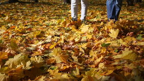 Two persons in jeans. Go on the fallen-down autumn leaves stock video