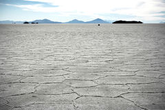 Two persons at the surface of Salt Lake of Uyuni i Stock Photos
