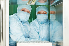 Two pharmaceutical factory workers Royalty Free Stock Images