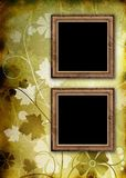 Two photo frames on floral background Stock Photos