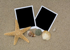 Two photos on the beach sand with shells and starfish Royalty Free Stock Image