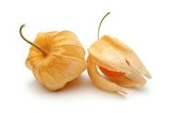 Two Physalis fruits Royalty Free Stock Image