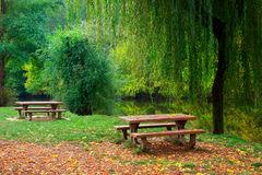 Two picnic tables by the river. Two picnic tables, grass and trees by the river Stock Photo