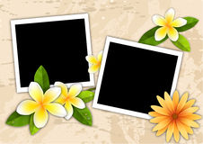 Two picture frame on the sand beach orchid flower Royalty Free Stock Images