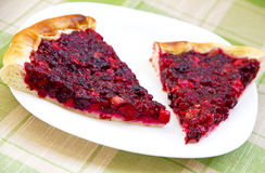 Two pieces of apple and cowberry jelly pie Stock Images