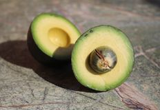 Two pieces of avocado. Avocado cut into two parts. On the rain forest stone table background stock image
