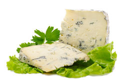 Two pieces of blue cheese Stock Image
