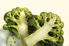 Two pieces of brocoli. Half sliced broccoli on a dish Royalty Free Stock Photo