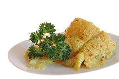 Two pieces of catfish. Two raw pieces of catfish with parsley on a white plate stock photo