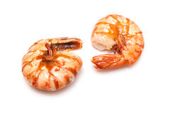 Two pieces of cooked shrimp Stock Image