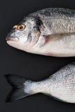 Two pieces of fresh Dorado fish on a black stone background. Stock Photos