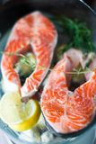 Two pieces of fresh salmon steak Royalty Free Stock Photography