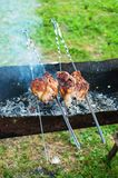 Two pieces of meat roasted on a grill. Royalty Free Stock Image