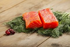 Salty salmon with cranberry Stock Image