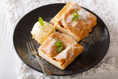 Two pieces of strudel with cottage cheese, and vanilla ice cream Stock Images