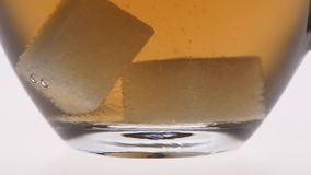Two pieces of sugar on the bottom of cup tea. Two sugar pieces fall to the bottom of cup tea, sugar starts to dissolve from the hot drink, side view, white stock video footage