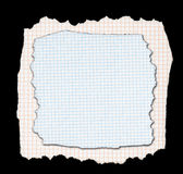Two pieces of torn squared paper Stock Images