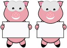 Two pig with a placard Royalty Free Stock Photos