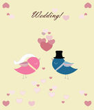 Two pigeons' wedding ceremony Royalty Free Stock Photos