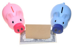 Two piggy banks. Standing side by side with dollar bills and a blank paper Royalty Free Stock Photos