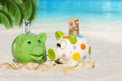 Two Piggy banks with banknotes on the Beach. Two Piggy banks with banknotes, Seashells and Starfish on the beach under Palm Frond with much Copy Space for Stock Photos