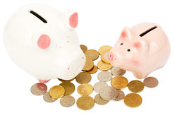 Two piggy banks with coins Stock Photography
