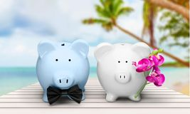 Two piggy banks on light background. Close up blue background money object nobody wealth Stock Photo